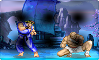 Street Fighters II